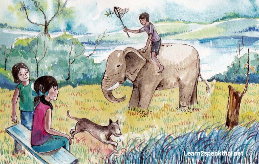 ขี่ช้าง