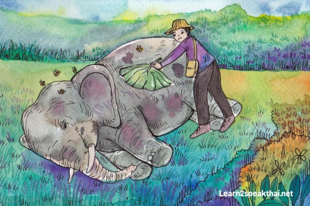 ช้างตาย
