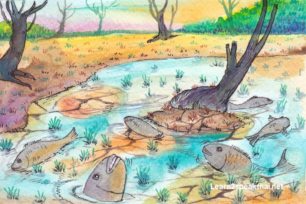 ปลาตายน้ำตื้น